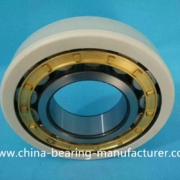 insulated-cylindrical-roller-bearing